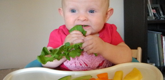 Crashcourse de Baby-led Weaning